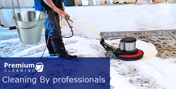 Carpet Cleaning By Chemical Free Solutions Milsons Point