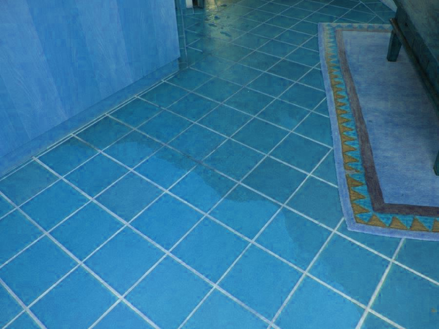 Tile Cleaning Orchard Hills