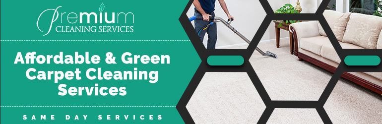 Carpet Cleaning Redfern