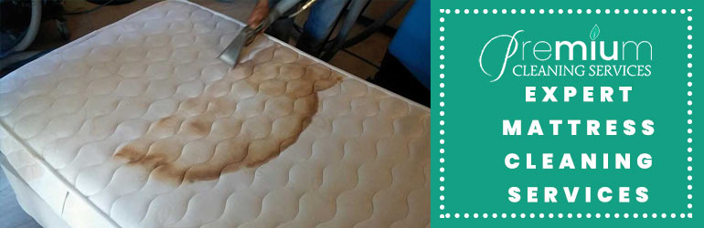 Expert Mattress Cleaning Services