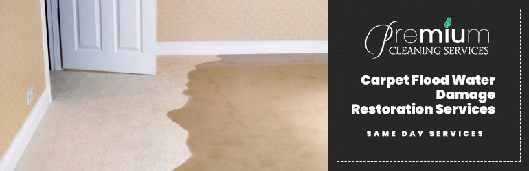 Professional Carpet Flood Water Damage Restoration Services